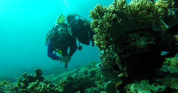 Scuba Diving & Water Sports at Grande Island