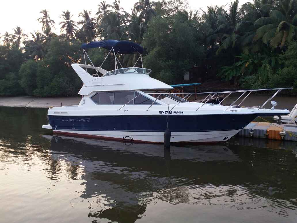 Bayliner Yacht in Goa